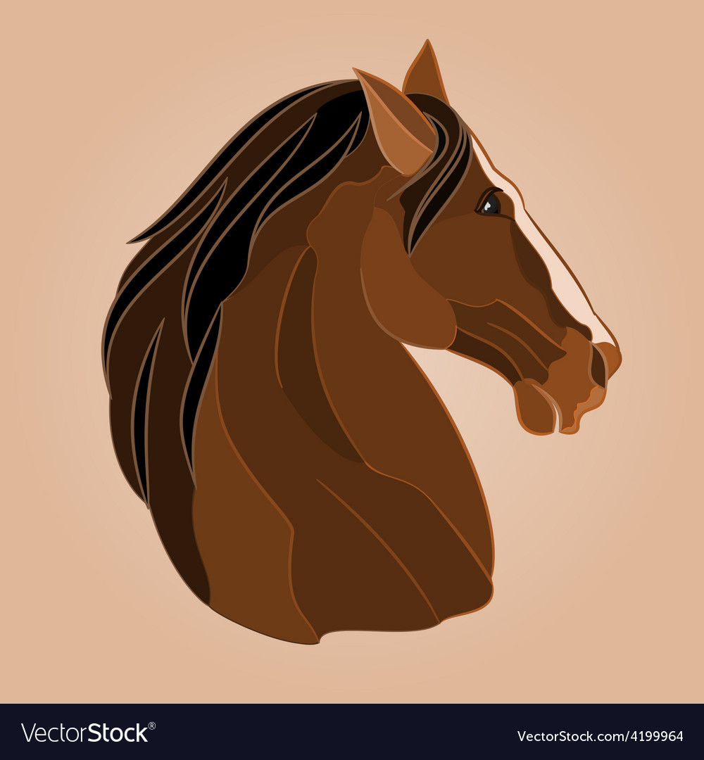The head of a brown horse stallion drawing vector