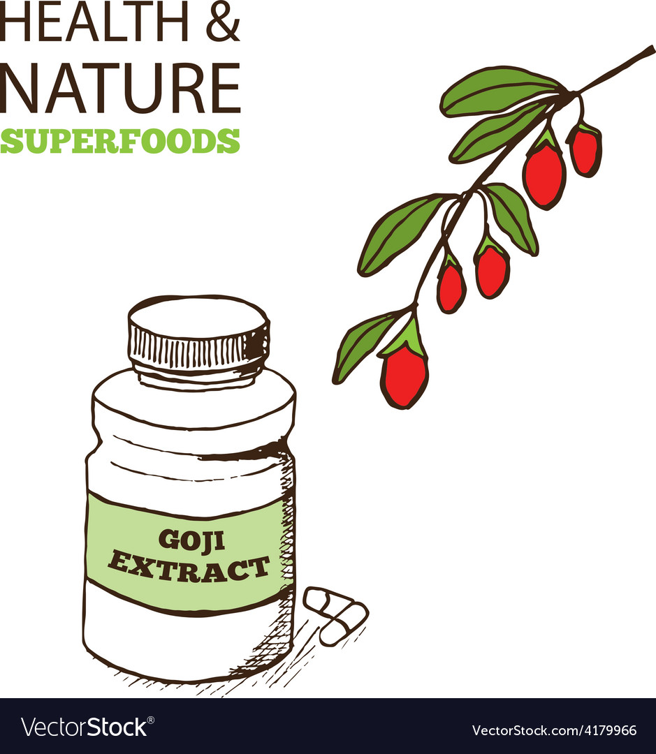 Health and nature superfoods collection vector