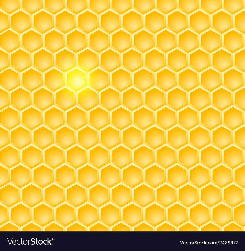 Brightcomb vector