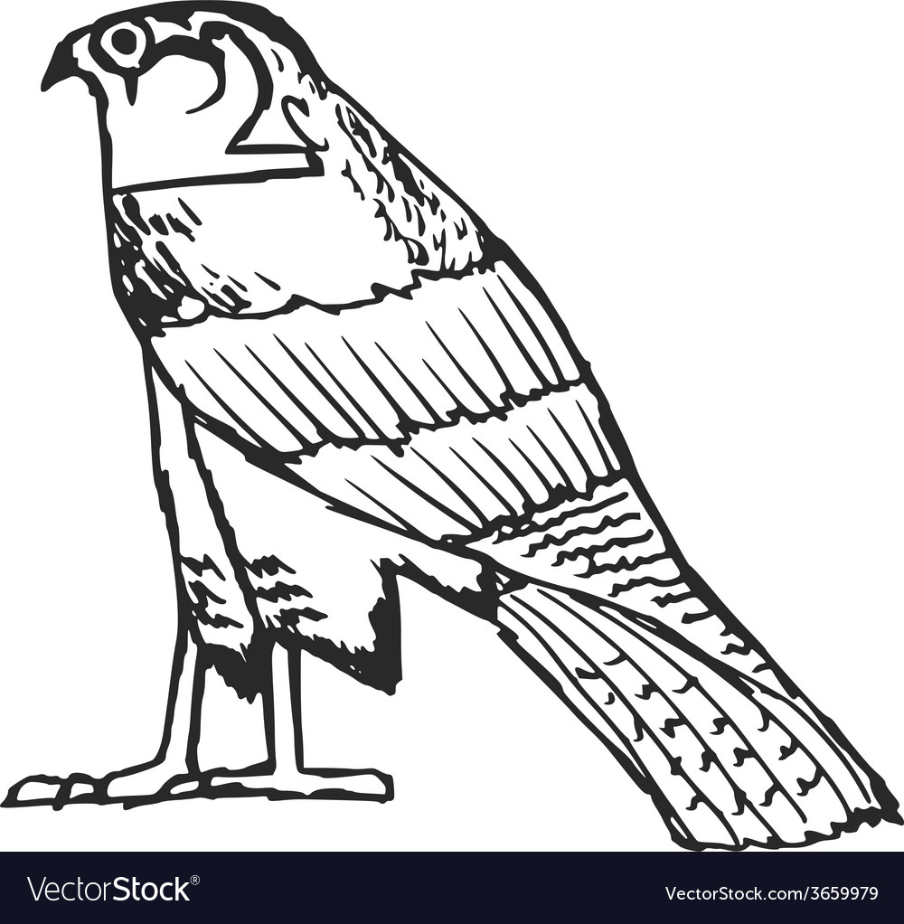 Falcon ancient egyptian symbol vector