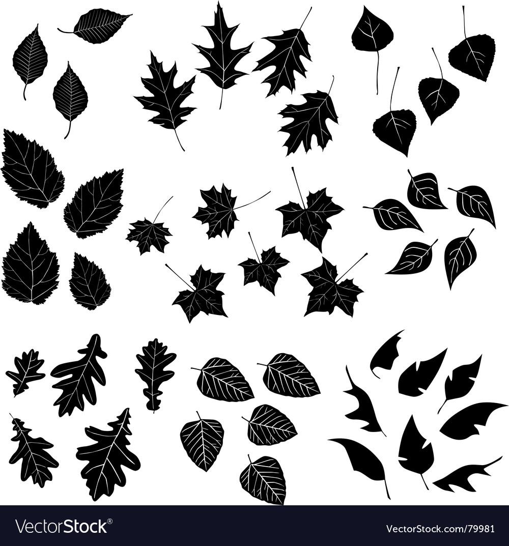 Leaf design elements vector