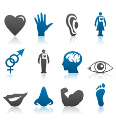 Physiology icons vector