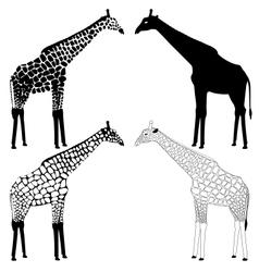 Giraffe silhouettes collection vector