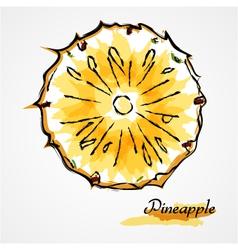 Pineapple fruit slice vector