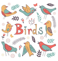 Cute hand drawn colorful birds collection vector
