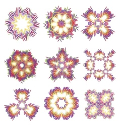 Beautiful abstract flower elements vector