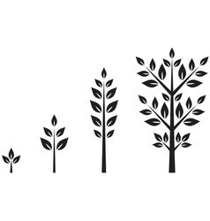 Trees of different ages vector