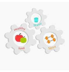 Cogwheel gear set with water apple dumbell vector