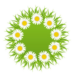 Spring freshness round card with grass and vector