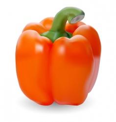 Orange paprika vector