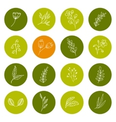 Set of hand drawn floral icons vector