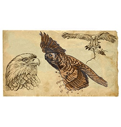 Animals theme birds of prey - hand drawn pack vector
