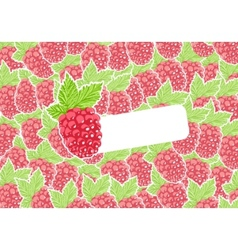 Berry vector