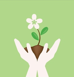 White flower on hand holding vector