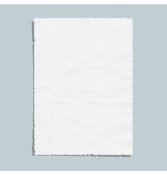 Empty white paper sheet vector