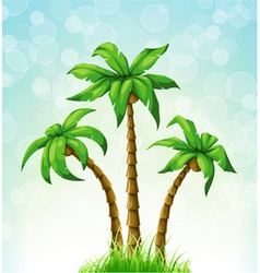 Summer with palm trees vector