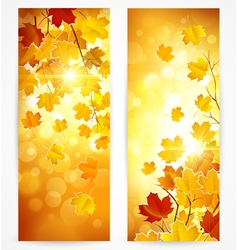 Collection of autumn banners vector