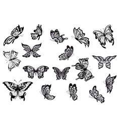 Set of black and white butterflies vector