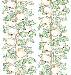 Seamless line pattern of the branches of the apple vector