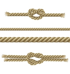Ropes decorative set vector