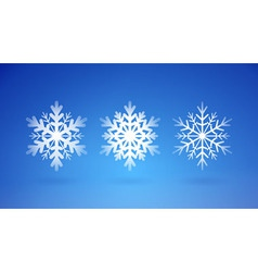 Snow flakes set vector