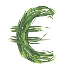 Euro sign from grass vector