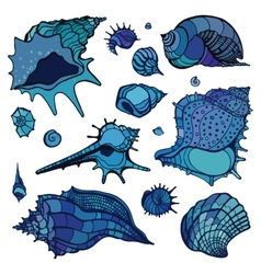 Sea shells set vector