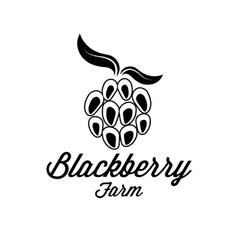 Blackberry farm vector