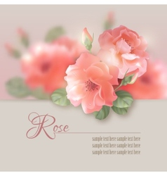 Card with flowers roses vector