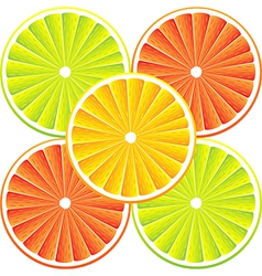 Citrus background with slices vector