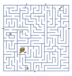 Labyrinth vector