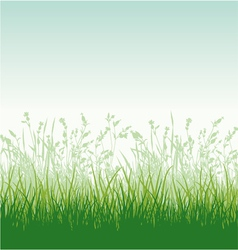 Grassy meadow vector