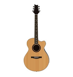 Acoustic guitar on white background vector