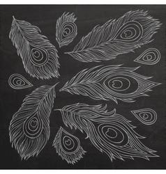 Vintage feather set vector