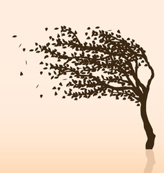Wind and tree vector