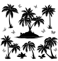 Tropical island palms and butterflies silhouettes vector