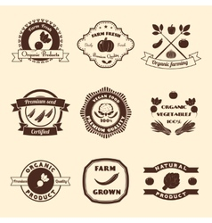 Vegetable label set vector