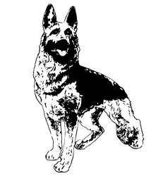 German shepherd vector