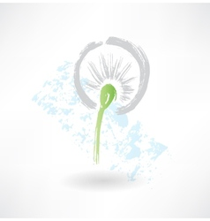 Dandelion grunge icon vector