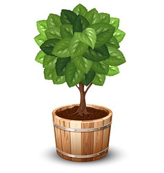 Tree tube vector