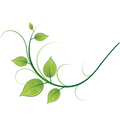 Pattern of twigs and leaves vector