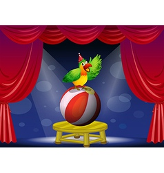 A colorful bird performing at the circus vector