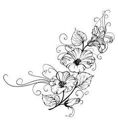 Bindweed flower vector