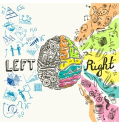Brain hemispheres sketch vector
