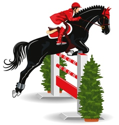 Show jumping jockey vector