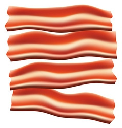Bacon vector