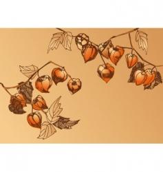 Orange chrysalis vector
