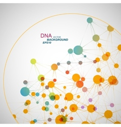 Network connection and dna eps10 vector