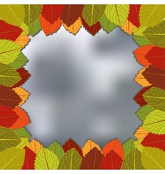 Autumn foliage blurred background vector