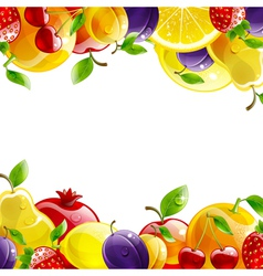 Banner of fresh fruit vector